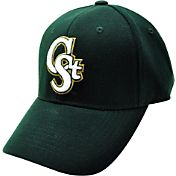 Top of the World Men's Colorado State Rams Green Premium Collection Hat